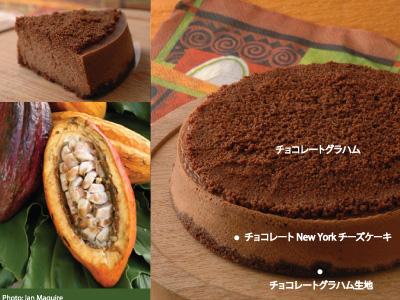 チョコレートチーズケーキ 400