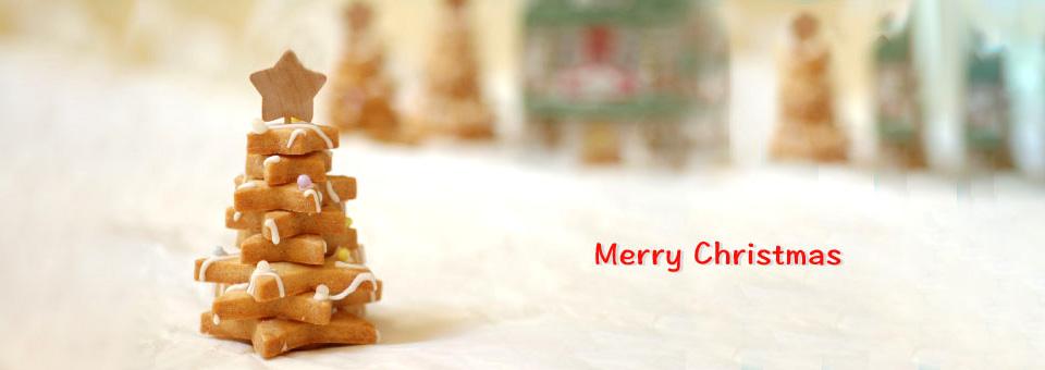 パパジョンズのクリスマスケーキ